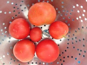 tomato size comparison